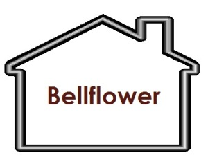 We Service Bellflower